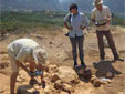 Customer Stories - Reviving the Past: Excavations at Sissi on Crete